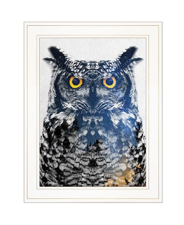 "Trendy Decor 4U Night Owl by andreas Lie, Ready to hang Framed Print, White Frame, 15"" x 19"""
