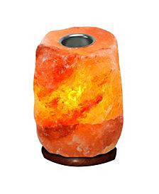 Evolution Salt Co. Aromatherapy Himalayan Salt Lamp