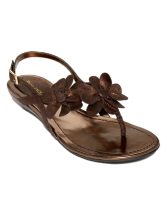Enzo Angiolini Shoes, Xylan Sandals Women's Shoes