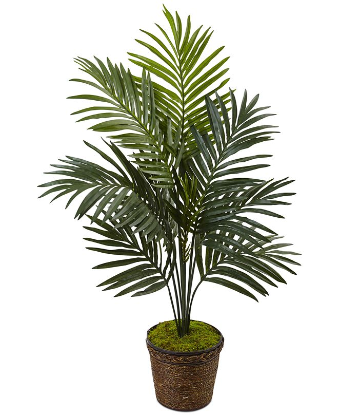 Nearly Natural 4' Kentia Palm Artificial Tree in Coiled Rope Planter