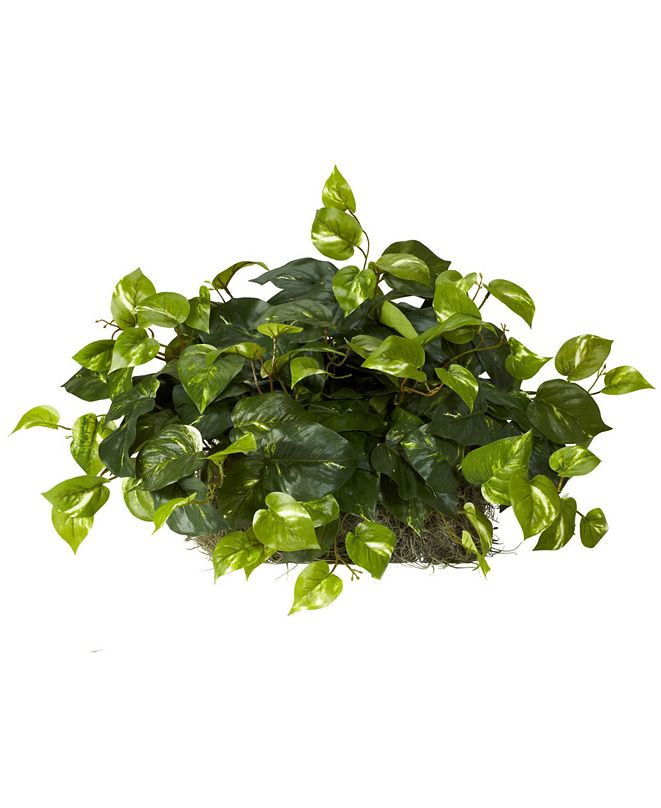 Nearly Natural Pothos Artificial Ledge Plant