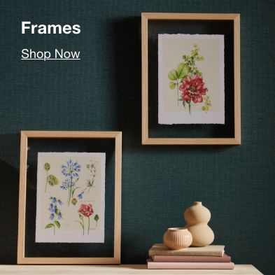 Frames, Shop Now